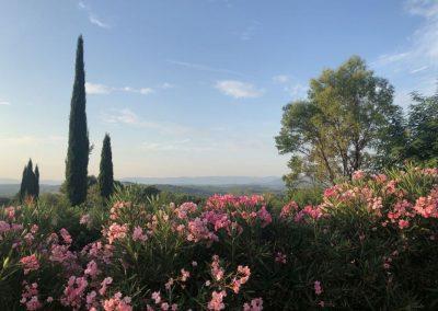 Tuin Villa-la-Douce-Provence-1024x682 IMG_7544