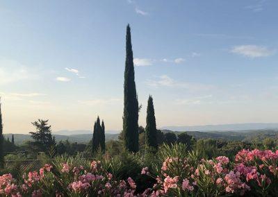 De tuin van Villa la Douce Noa Provence