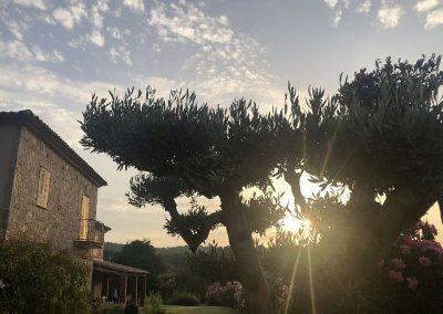 Villa-la-Douce-Provence-1024x682 IMG_7801